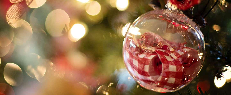 Julebelysning og pynt på tre