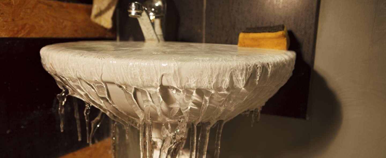Vask med frostskade